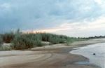 Песчаный пляж на берегу Оки